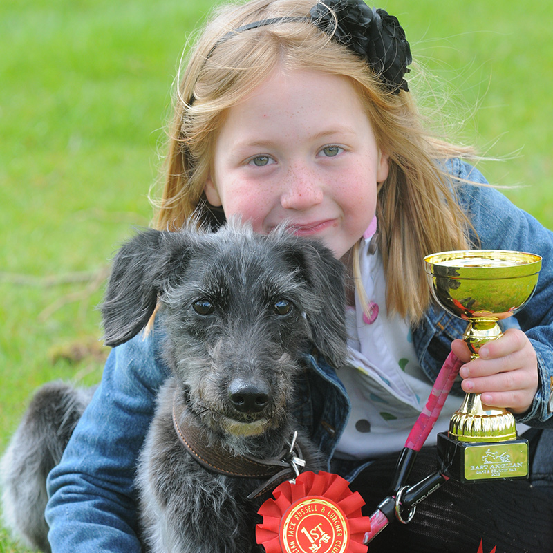 Pet Dog Show winner